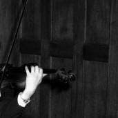 L44778 hand & violin & panellin