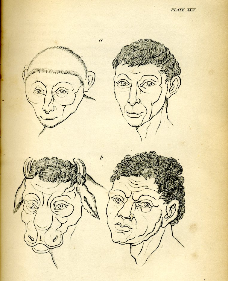 johann lavater essays on physiognomy Lavater's essays on physiognomy with ornamental caricatures, and finished portraits, volume 1 of 4 essays on physiognomy, designed to promote the knowledge and the love of mankind, volume 3.