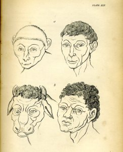 Johannes Kaspar Lavater, 'Essays in Physiognomy', plate 29.