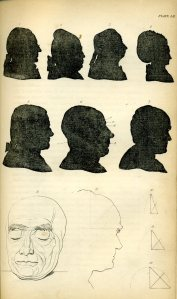 Johannes Kaspar Lavater, 'Essays in Physiognomy', plate 52.